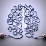 Fitness do cérebro
