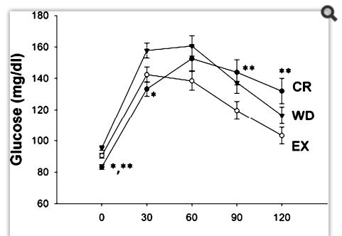 restrição calórica glicose