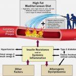 Gordura saturada não entope suas artérias