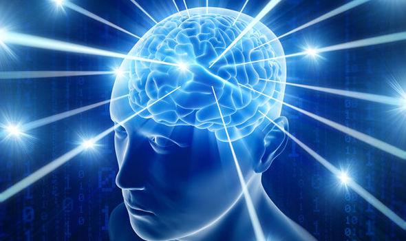 imagem neuroplasticidade