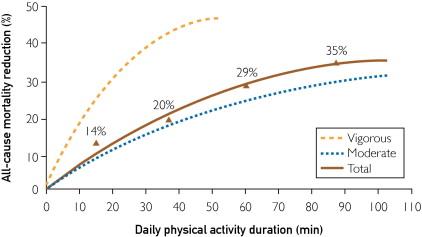 grafico 2 exercícios