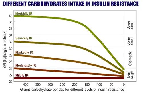 resistencia a insulina noakes