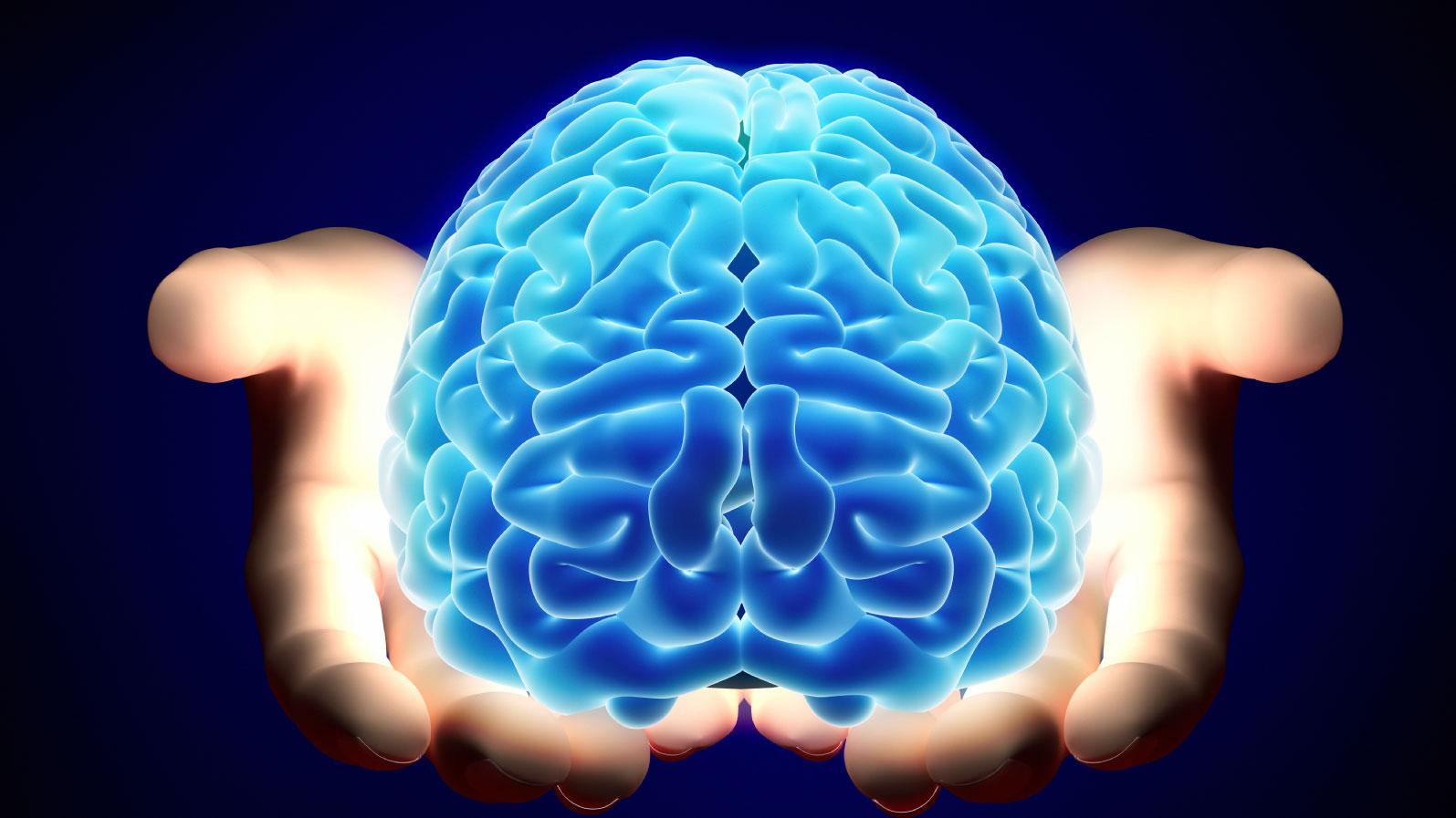 cerebro imagem 2